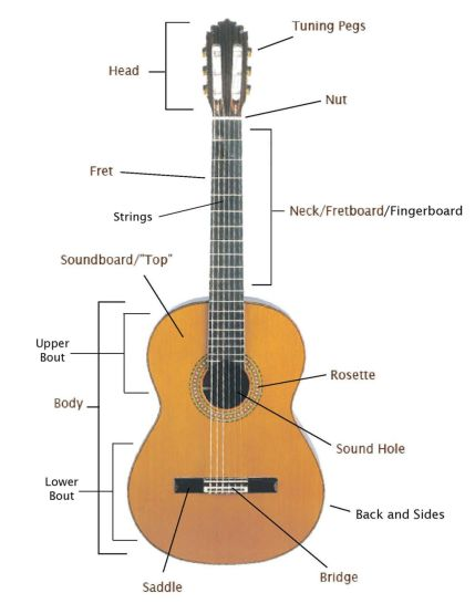 Guitar Anatomy & String Stuff – Acoustic Notes